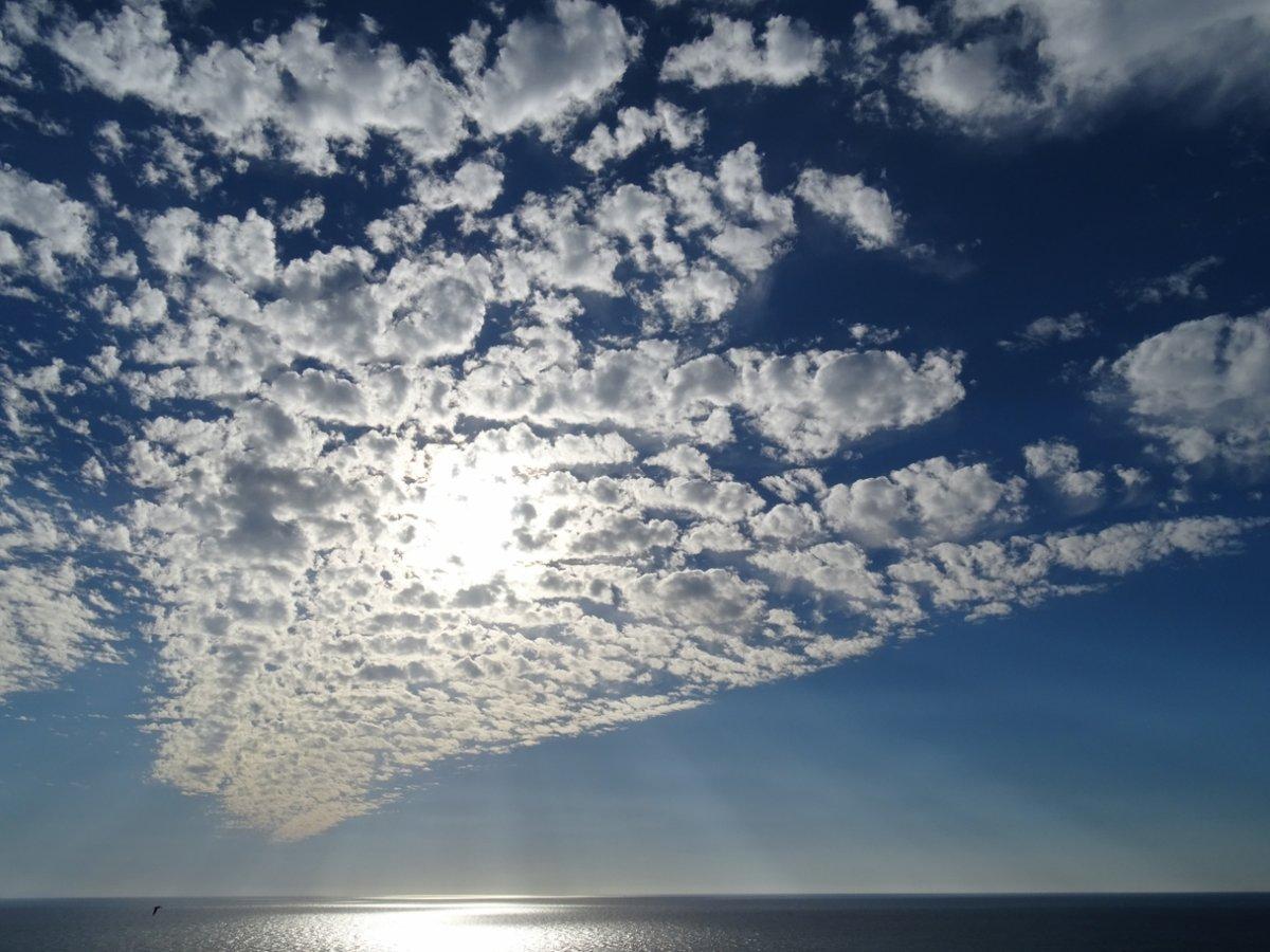 время, когда фото небо птицы облака такой десерт эффективно