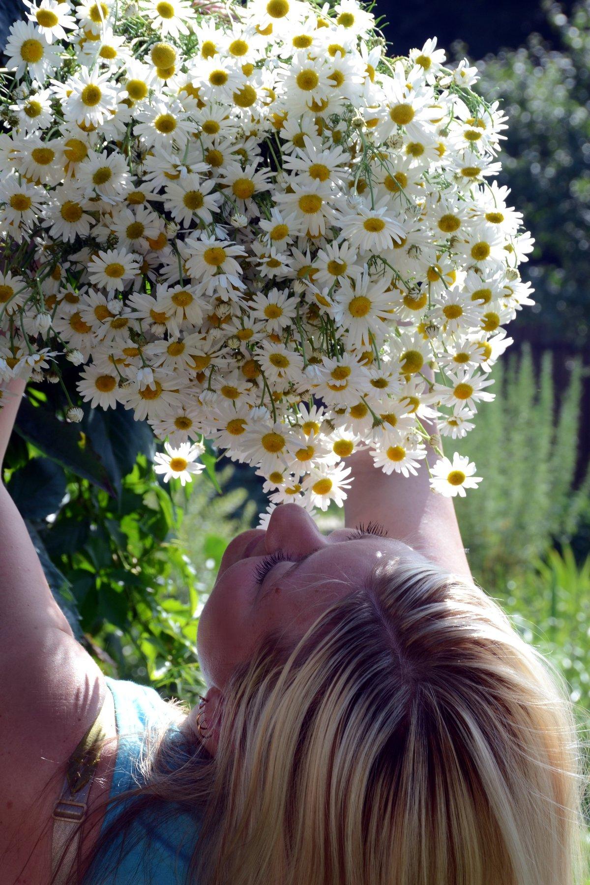 Поздравления девушка с букетом ромашек фото, цветы интернет