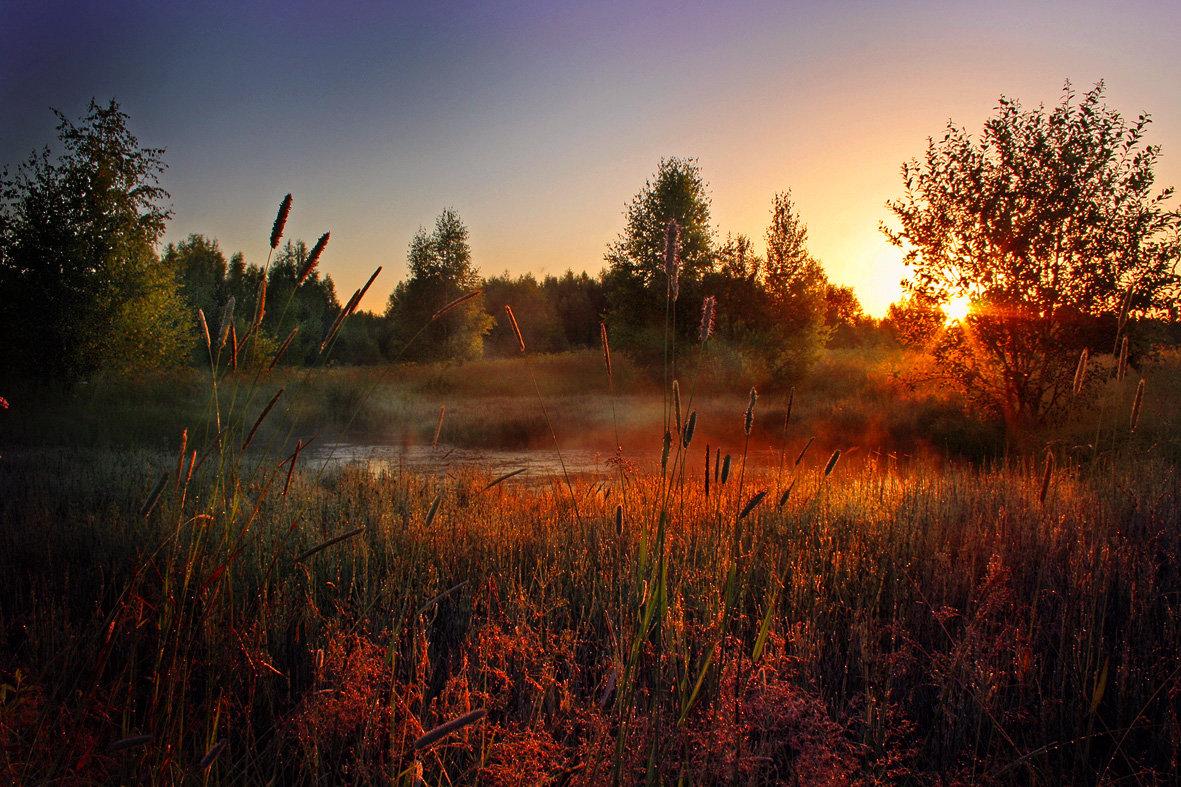 РасСвет#вода #июль #лето #лучи #небо #природа #рассвет #солнце #туман
