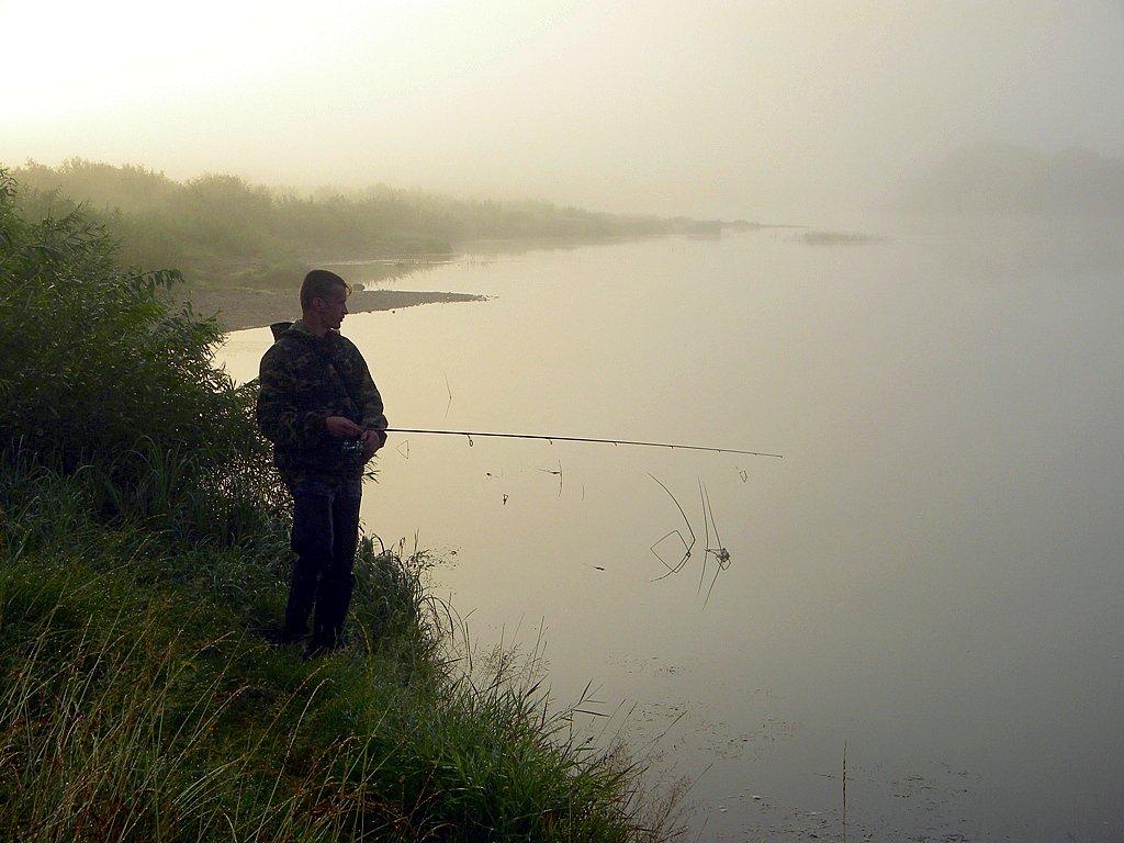 бегать спеша, ожидание на рыбалке картинки рузвельт терьер