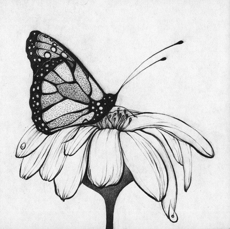 Поздравляем, картинки в черно белом цвете для срисовки