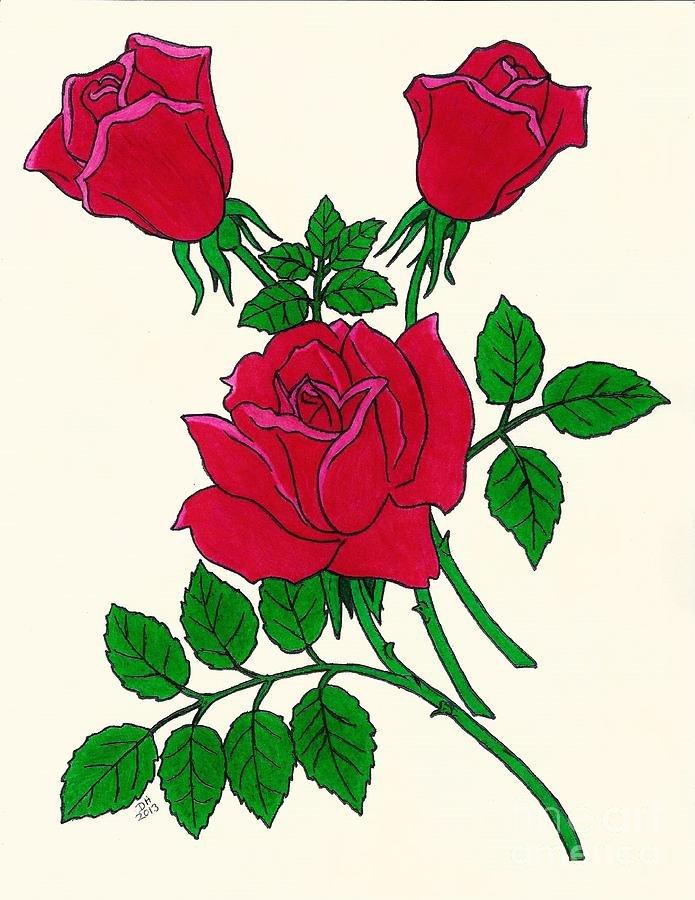 Картинки роза цветок нарисованная