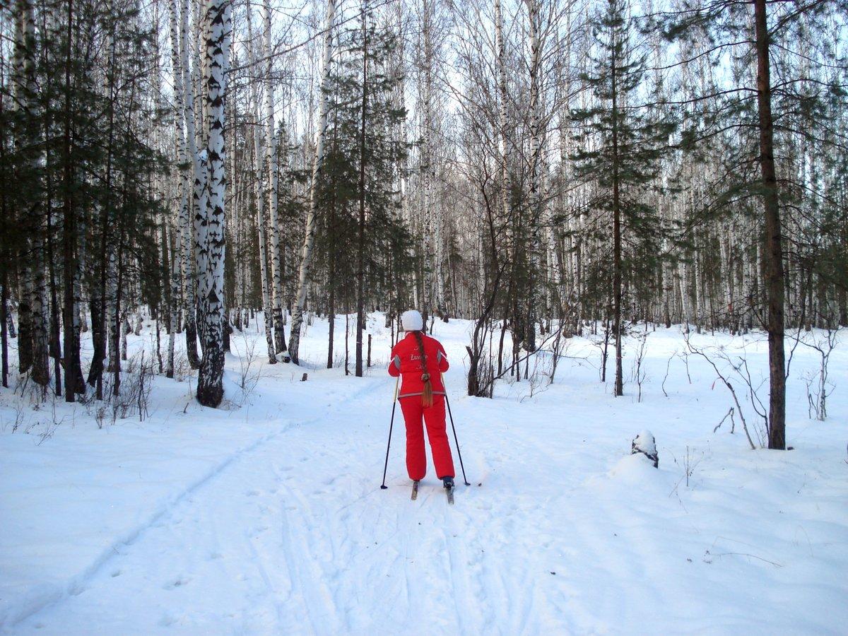 Фотосессия в лесу зимой с лыжами