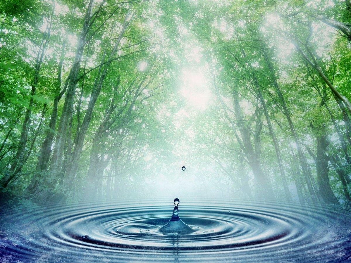 Вода картинки живые