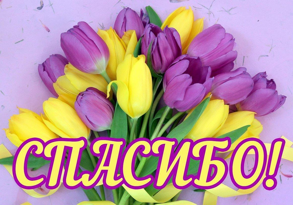 Красивые цветы спасибо открытки