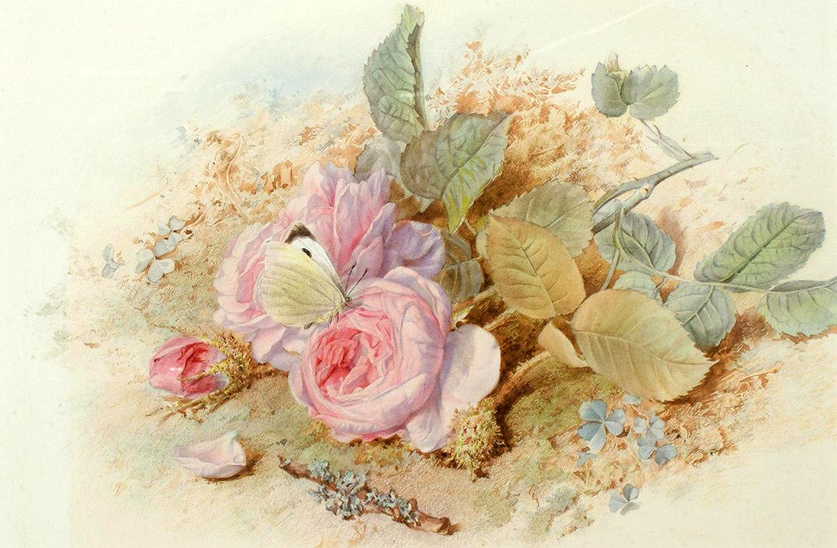 картинки для декупажа розы в большом разрешении унаследовал