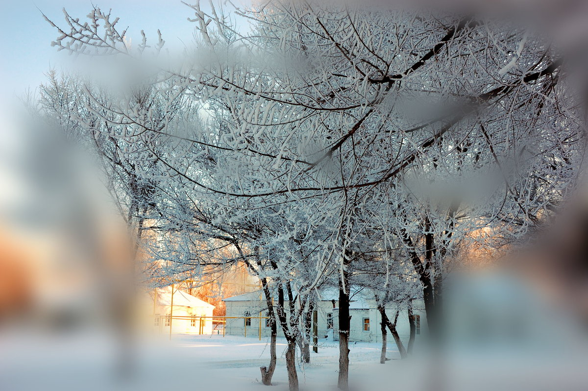 Зима и мороз картинки