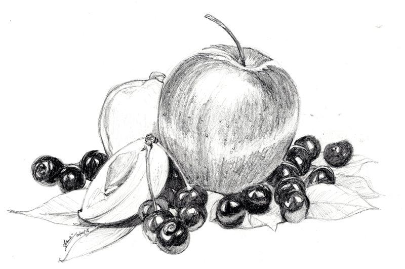 менее, советовали рисуем карандашом ягоды картинки душа становиться