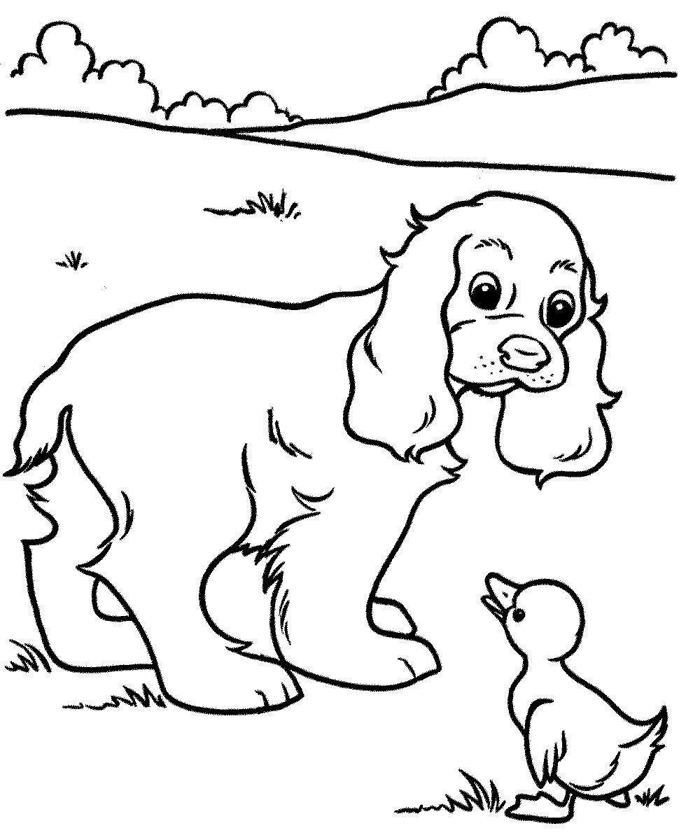 «Раскраска Собаки и щенки - любимый герой вашего ребенка ...