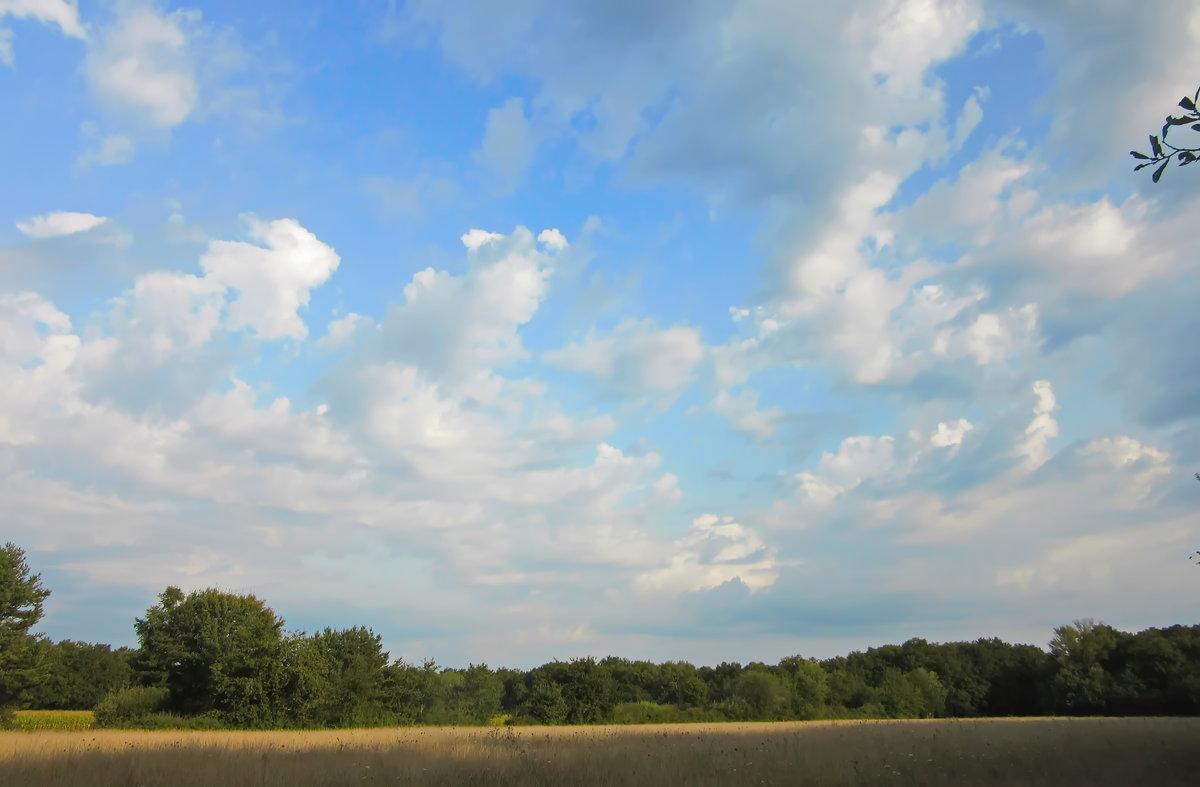 Картинки облака плывущие по небу
