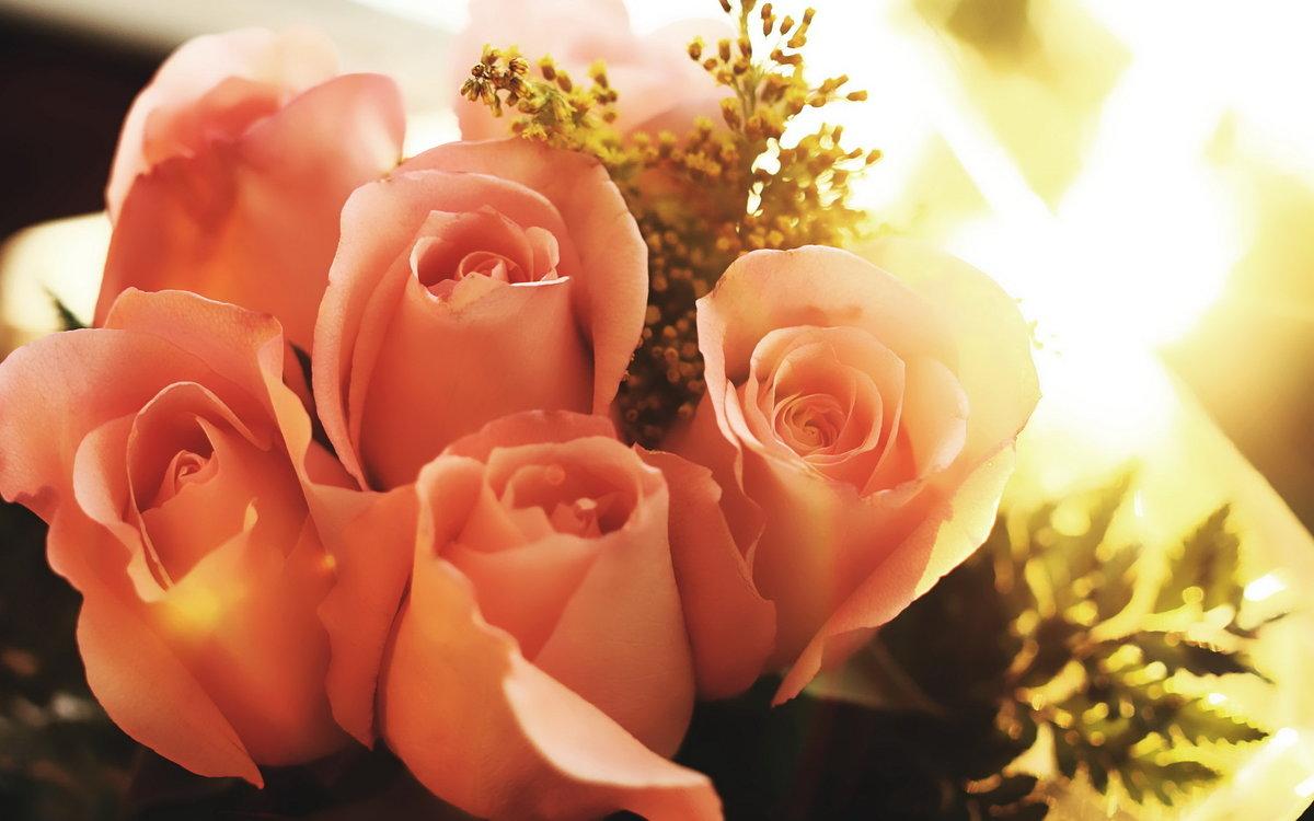 Картинки с днем рождения чайные розы