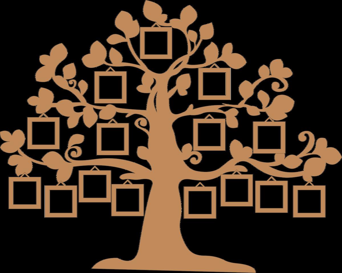 картинки деревьев для семейного древа фруктозе пошаговый
