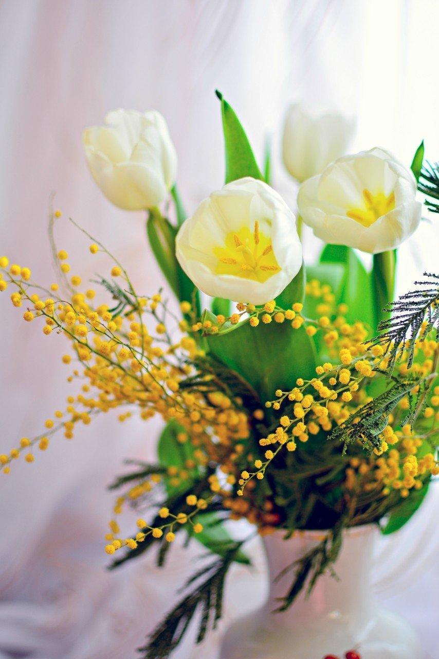 Красивые картинки с тюльпанами и мимозой