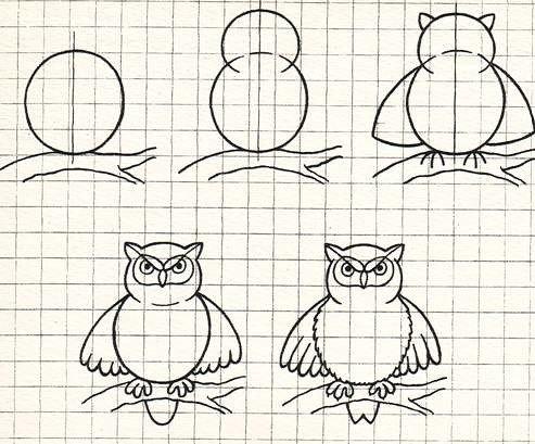 Рисунки карандашом сова поэтапно это
