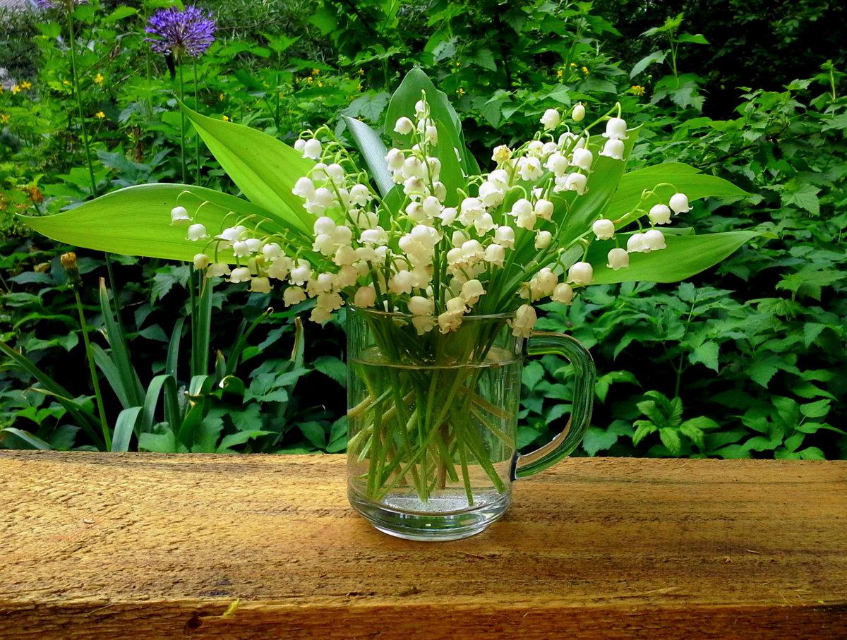 картинка цветы ландыши нарциссы лилии используется абсолютно привычные