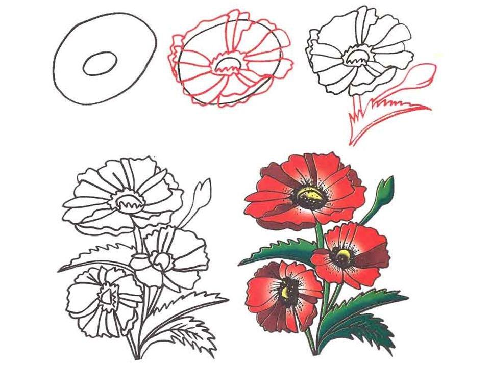 Открытка из цветов нарисовать поэтапно