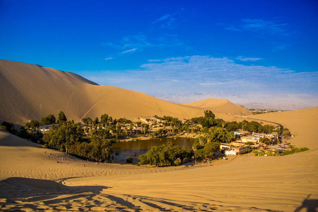 Пустыня с оазисом картинки
