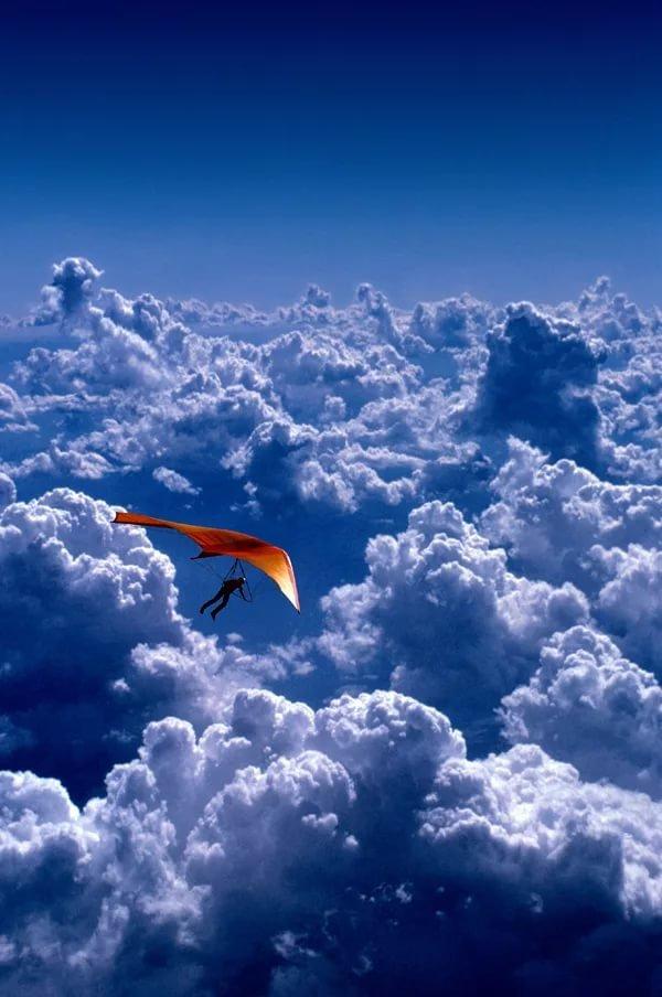 ха-ха-ха ты в небе летал картинки течение дня