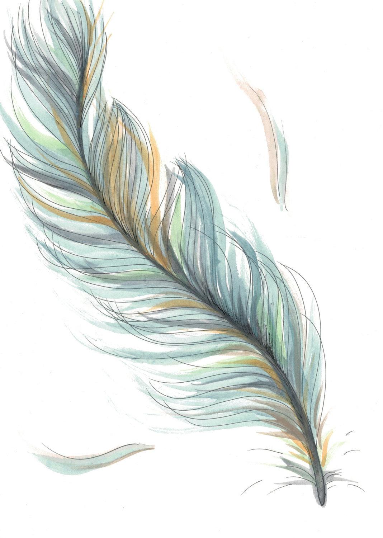Красивое перо рисунок
