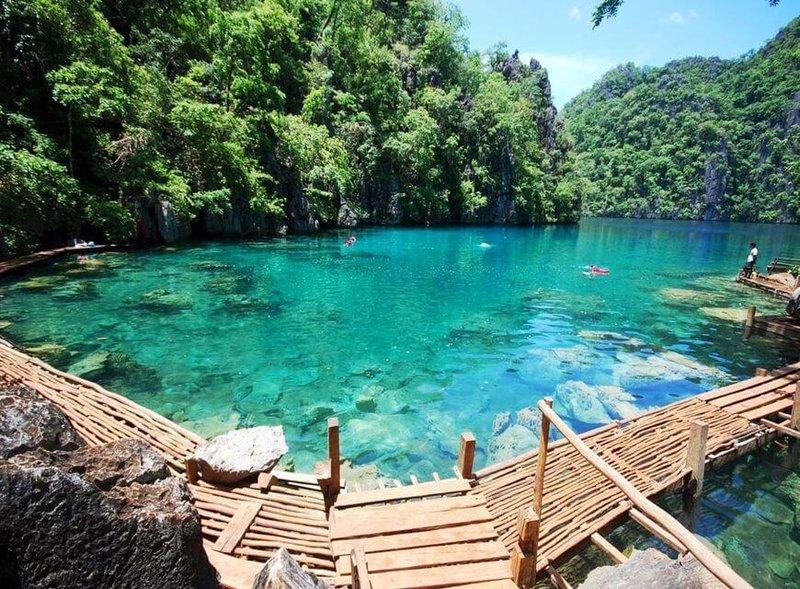 Экзотическая  природа тропиков- Филиппины