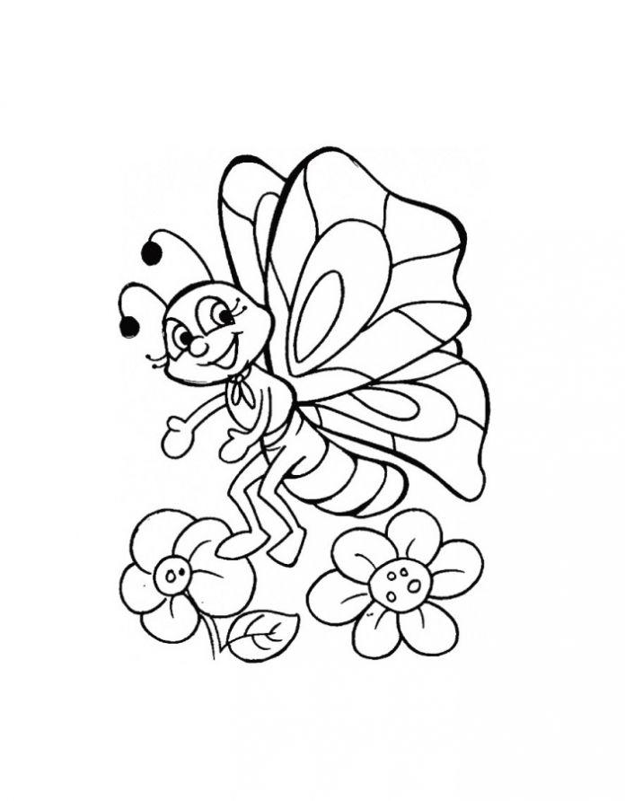 картинки раскраски цветы и бабочки