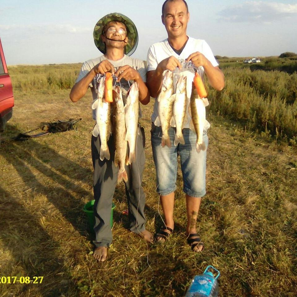 fishhungry видео смотреть