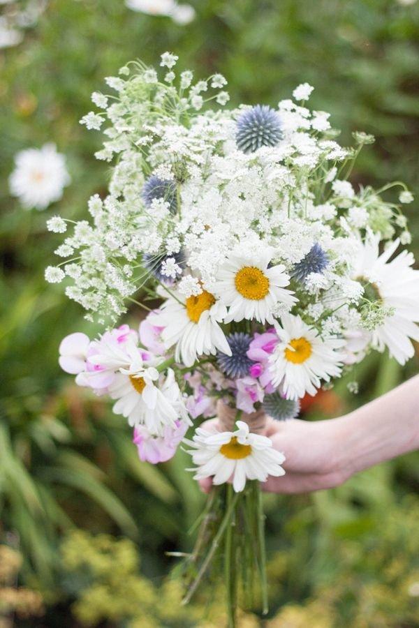 Ромашки букет полевых цветов в руками, цветов