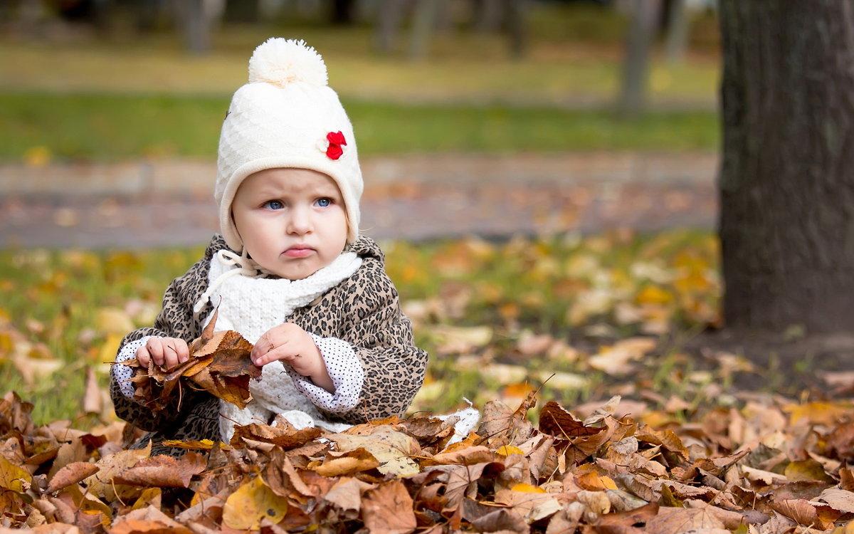 Смешная картинка про детей и осень, открытки