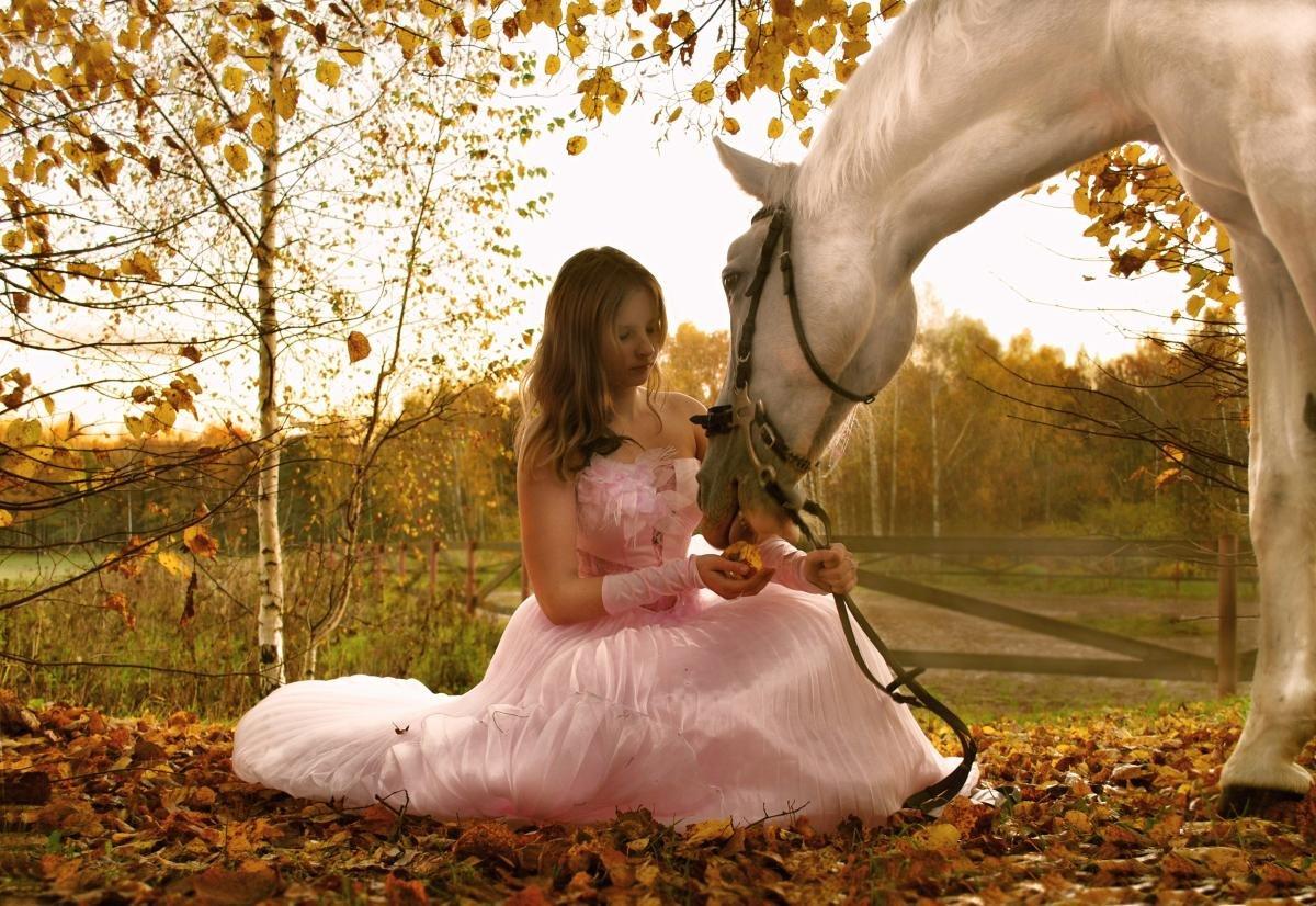 удачных выходных картинки с лошадьми сиджеса подробными