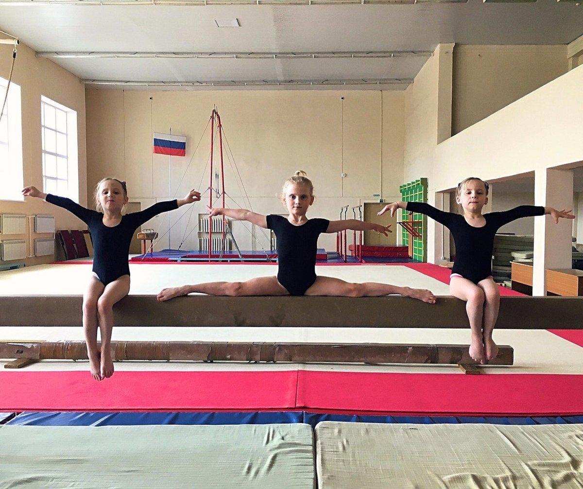Спб гбоу дод детско-юношеская спортивная школа центрального района.