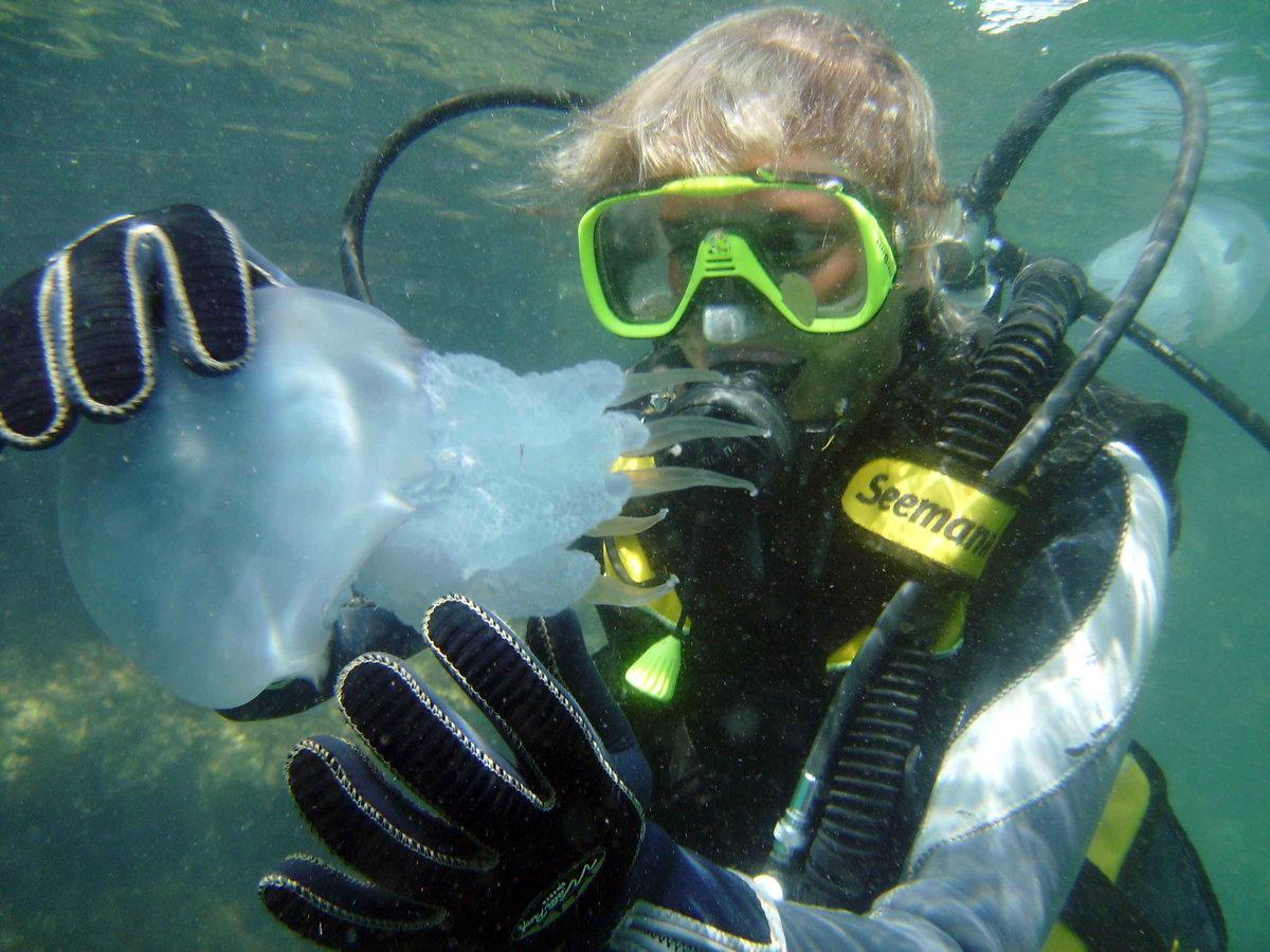 очень фото подводное груца александр первый взгляд это