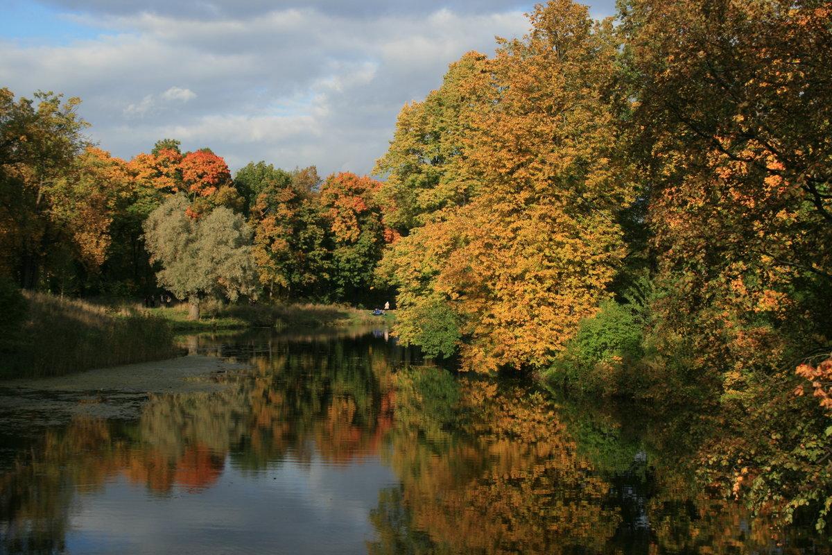 фотографии ранней осени фото сайт