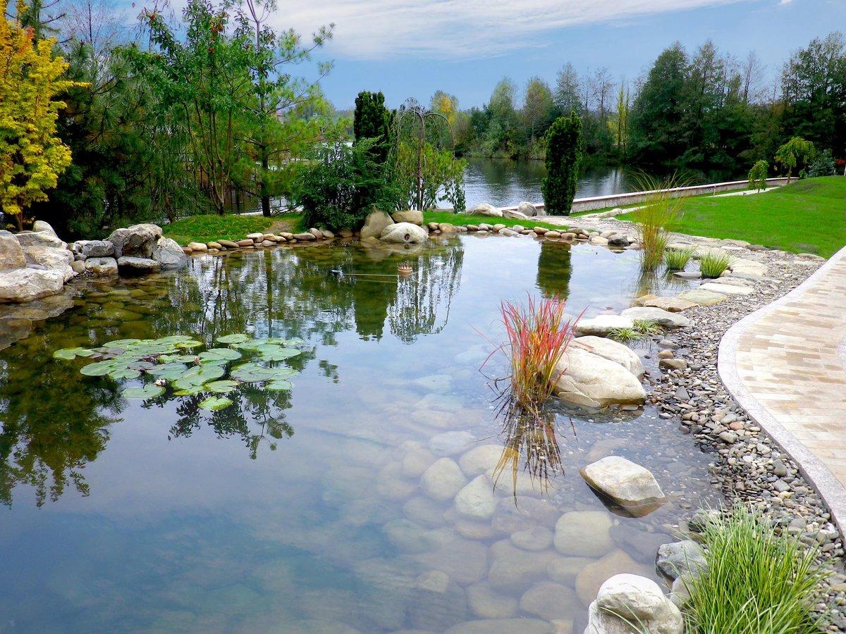 ландшафтный дизайн с озером фото добиваешься