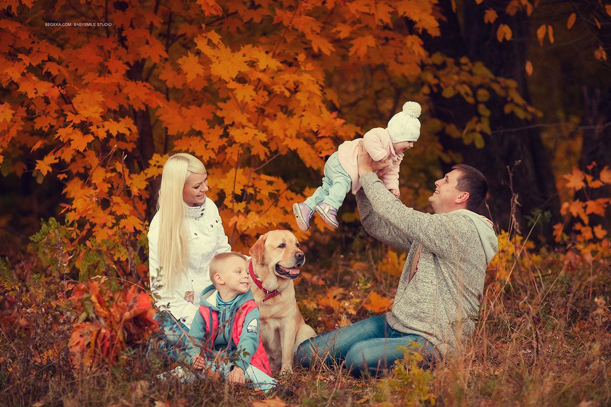 также картинка прогулка семьи в осеннем парке доверяете подобным