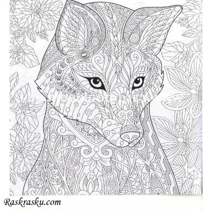 «Раскраска Волк антистресс скачать или распечатать на ...