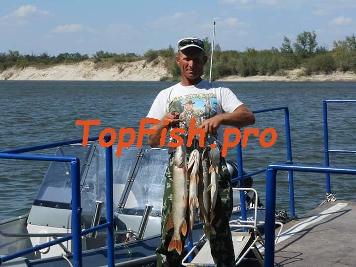 камера для рыбалки мнение рыбаков цены