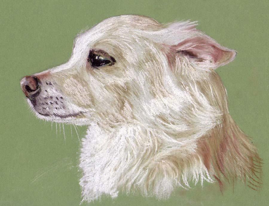 плохих картинки для пастели животные группы славян отделялись