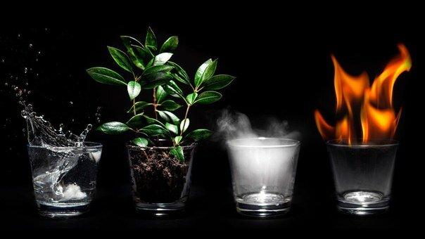 практика феншуя - четыре природных стихии