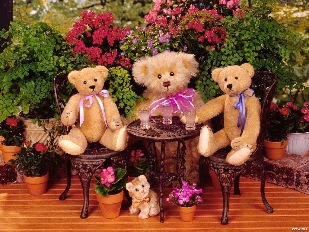 Днем рождения, картинки красивые игрушек