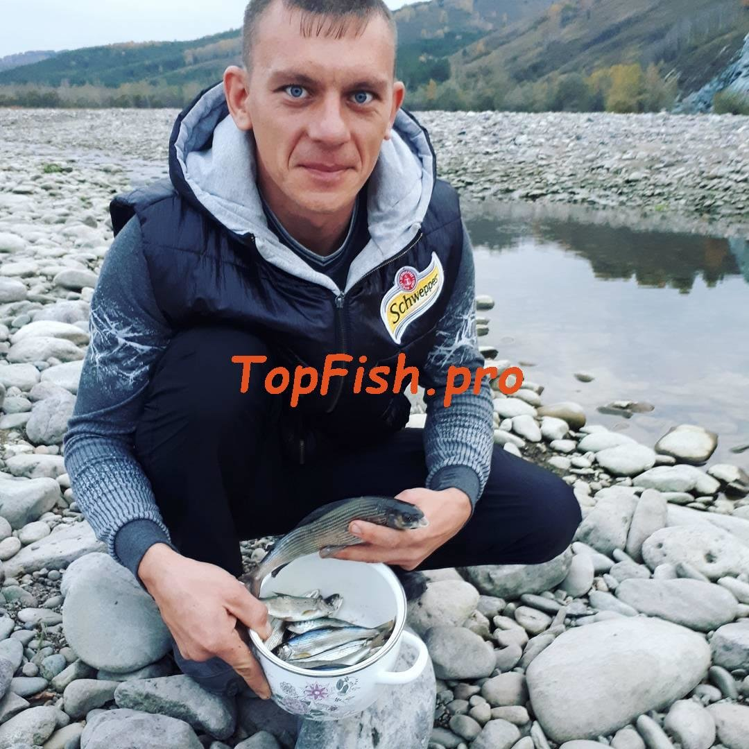 fishhungry украина