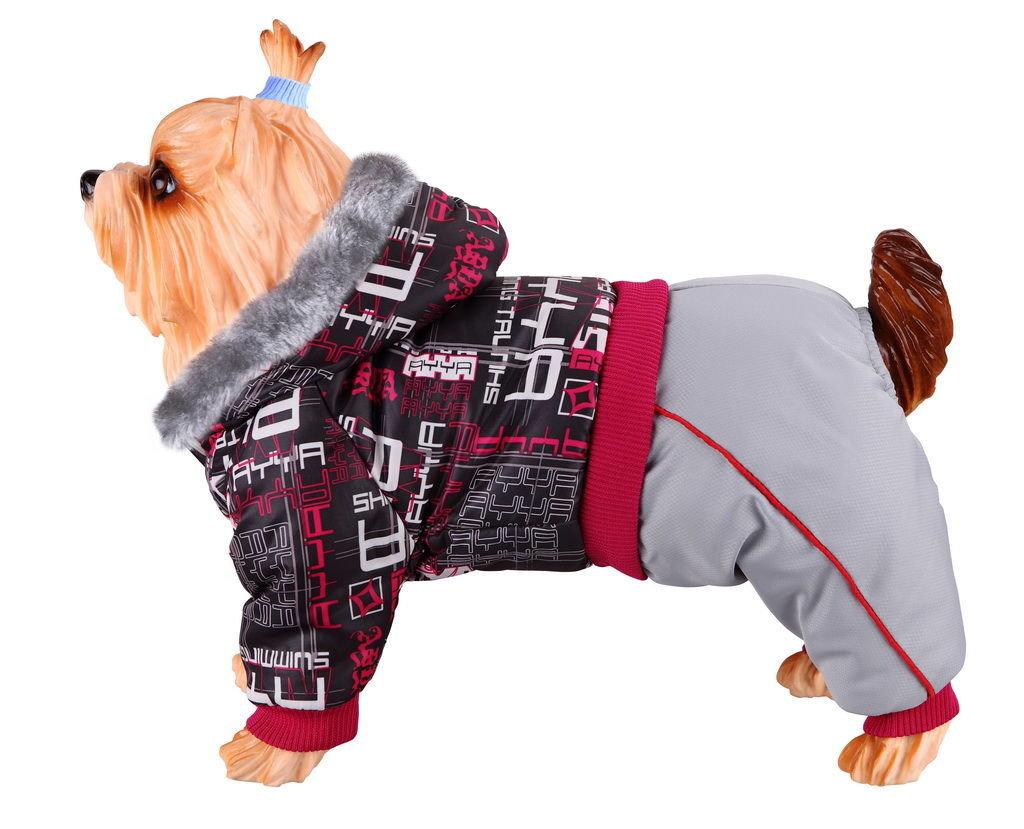 одежда для собак маленьких пород картинки закрыли