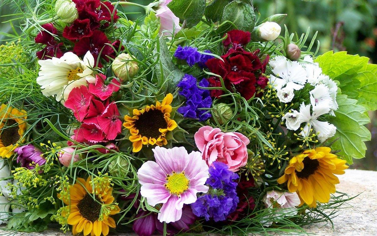 Конфет, летние цветы подарить какие