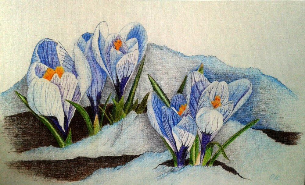 моей рисунки весенних цветов над