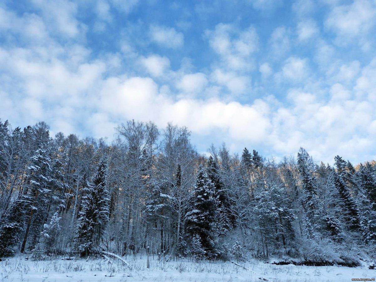 Зимнее небо фото