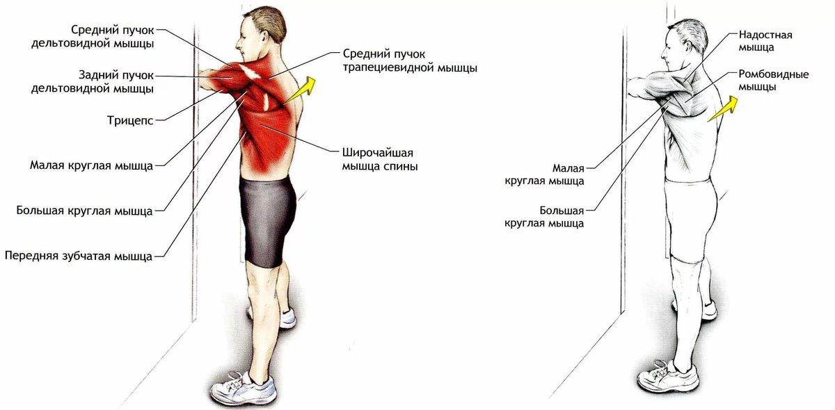 Почему болят мышцы суставы и кости тела что делать если потянул сустав