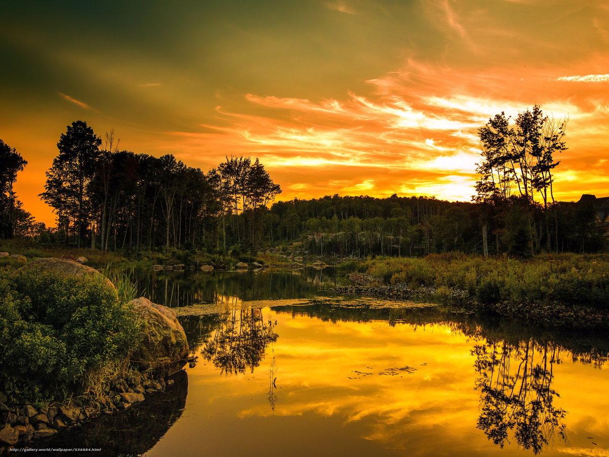 Добрый вечер картинки с природой, картинки роксоланы поздравление