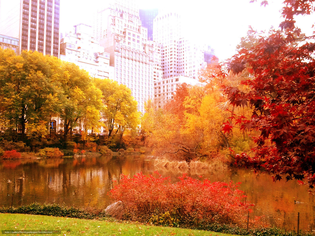 Картинки красивая осень в городе