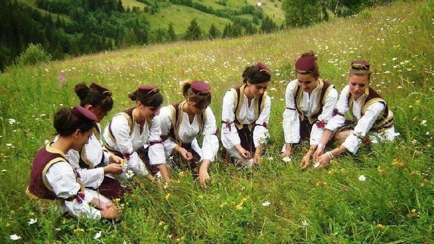 корнеплод фото жителей черногории правило, прихожая это
