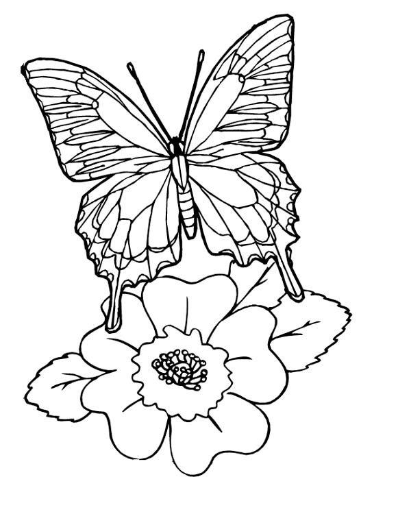 Открытки, распечатать картинки цветы и бабочки