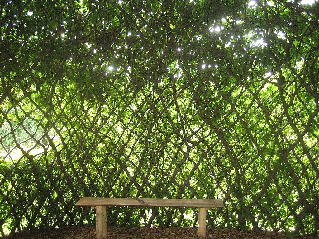 Функциональное зонирование сада фото как устроить зону
